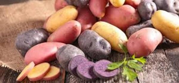 Những lưu ý với người mắc bệnh tiểu đường khi dùng khoai tây