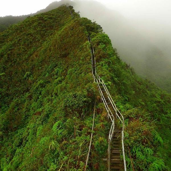 Những nhịp cầu thang Haiku ẩn hiện trong làn mây