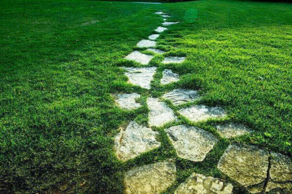 Những phiến đá xanh giúp khu vườn thêm ấn tượng