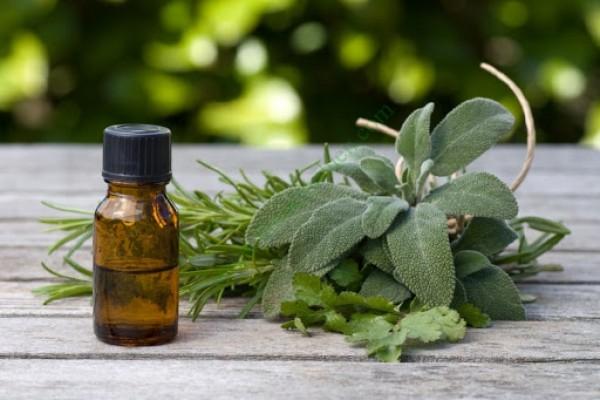 Những tác dụng ít người biết về tinh dầu với sức khỏe
