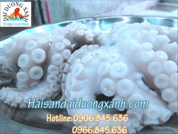 Nơi cung cấp hải sản uy tính tại tp Hồ Chí Minh, Đồng Nai và Bình Dương