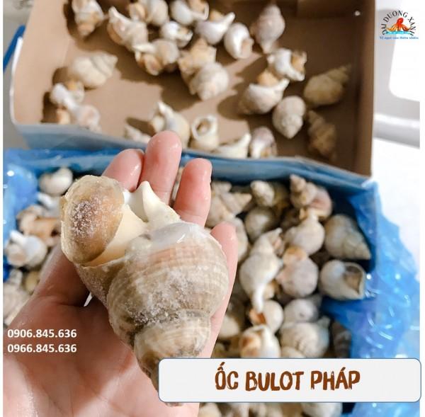 Ốc Bulot Pháp giá tốt tại TP Hồ Chí Minh