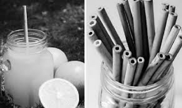 Ống hút nhựa góp phần không nhỏ gây nên tình trạng ô nhiễm