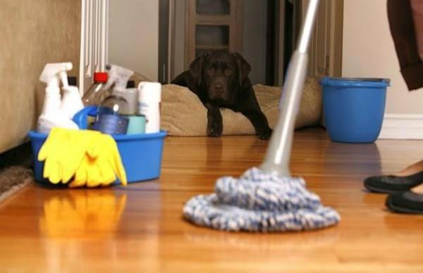 Quy tắc dọn dẹp nhà cửa nhanh trong chớp mắt