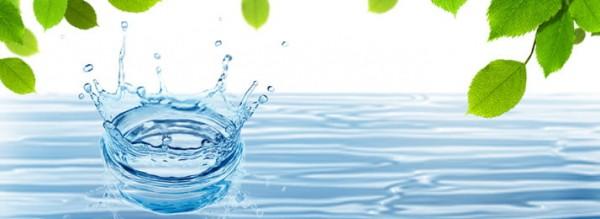 Rước bệnh vào người nếu không lưu ý mức an toàn của nước