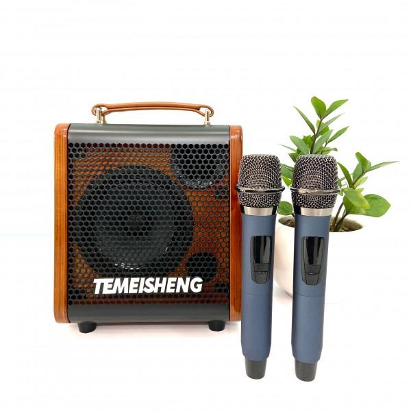 Sang Trọng - Đẳng Cấp: Loa Karaoke Di Động Temeisheng JT06-53