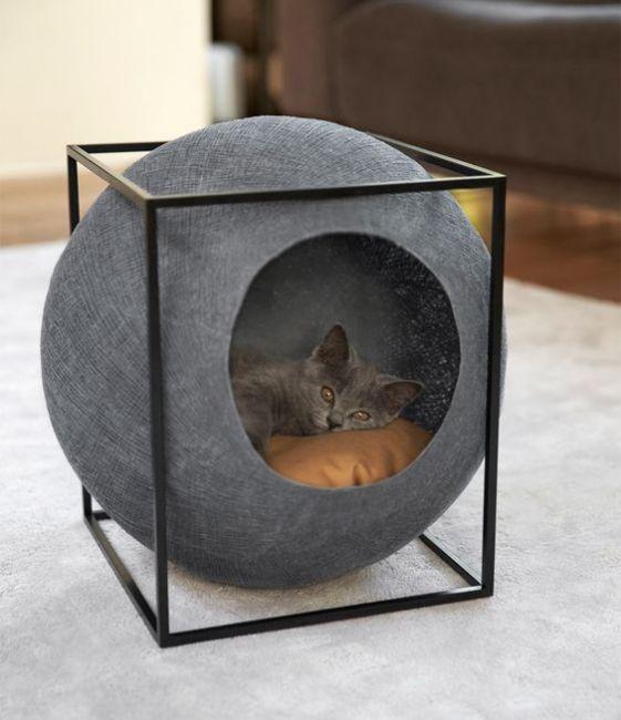 Sắp xếp nơi ở phù hợp và đẹp mắt cho thú cưng
