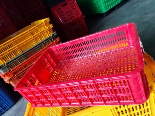 Sóng nhựa hở 1T5 – khay nhựa 1T5 giá rẻ