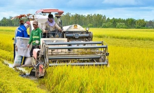 Tăng cường hiệu quả năng lượng cho nông nghiệp