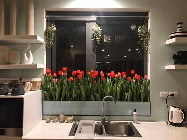 Tăng thêm vẻ đẹp của ngôi nhà bằng những bồn hoa xinh đẹp, rực rỡ