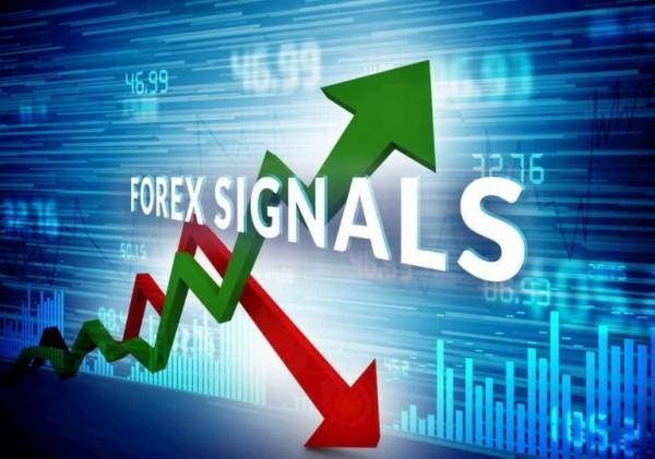Tất tần tật những loại tín hiệu giao dịch forex chuẩn và uy tín