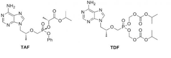 Tenofovir có tác dụng gì? Cơ chế hoạt động của Tenofovir?