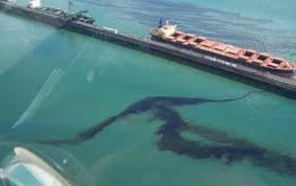 Thảm họa dầu mỏ phải lường trước hậu quả và chuẩn bị cho chúng