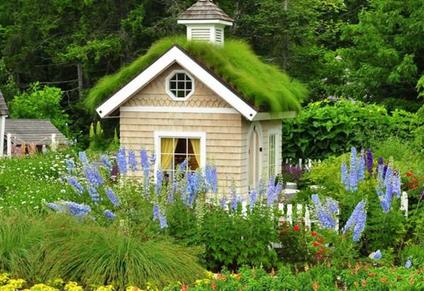 Tham khảo ngay ý tưởng xây ngôi nhà nhỏ trong khu vườn xinh