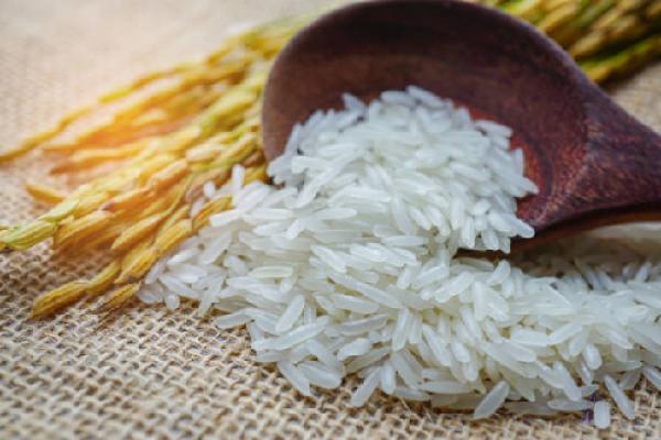 Thêm đại lý gạo ST25 chính hãng tại Hà Nội