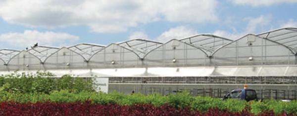 Thiết bị nhà kính, cung cấp vật tư nhà kính,vật liệu làm nhà kính trồng rau,nilon làm nhà kính