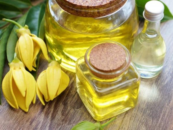 Thông tin hữu ích bạn cần biết về tinh dầu
