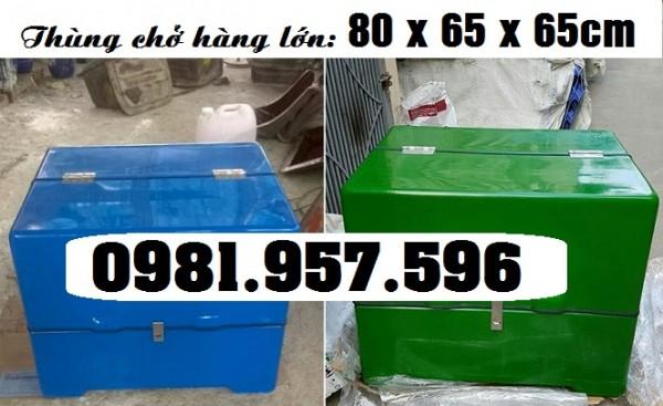 Thùng chở hàng xe máy cỡ đại, thùng chở hàng 80 x 65 x 65cm