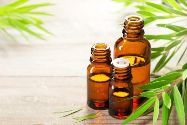Tìm hiểu 4 loại tinh dầu trị mụn nhanh chóng, an toàn