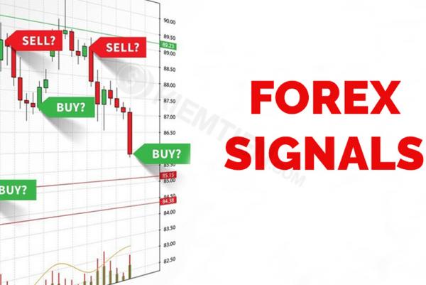 Tìm hiểu đầu tư forex signal chuyên nghiệp nhất.
