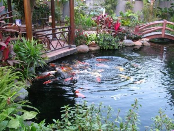 Tìm hiểu xu hướng làm cảnh quan sân vườn