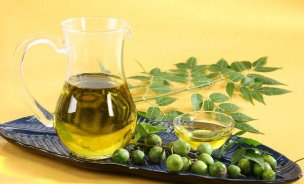 Tinh dầu Neem cung cấp dưỡng chất cần thiết cho da