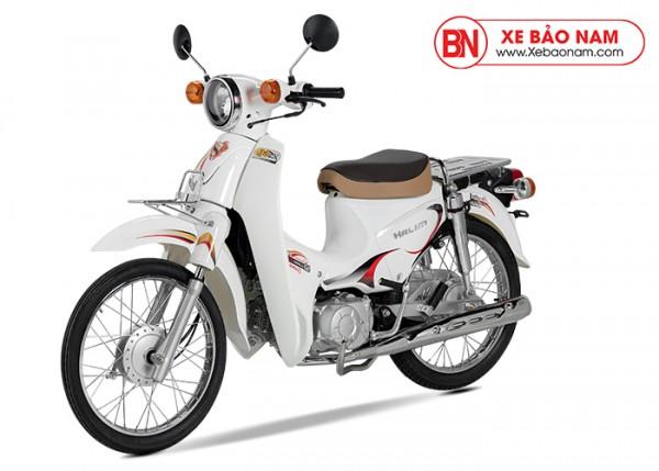 TOP Xe Cub 50cc 2020 Mới Nhất Hiện Nay