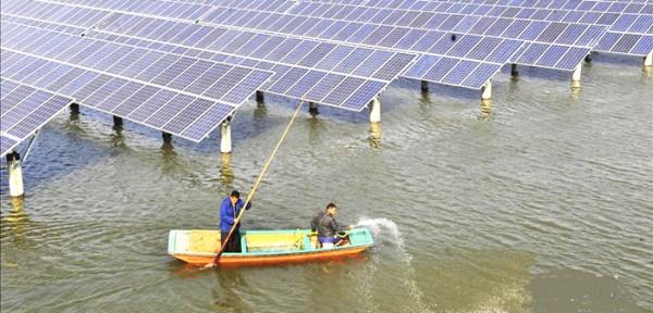 Trang bị hệ thống điện mặt trời cho ao nuôi tôm