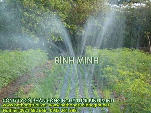 Tưới nước cho vườn cây ăn quả, vòi tưới rau, béc tưới rau, vòi phun xoay 360 độ, vòi phun tưới rau