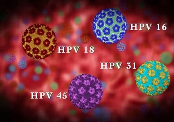 VIRUS HPV LÀ GÌ? NGUYÊN NHÂN VÀ CÁCH ĐIỀU TRỊ VIRUS HPV