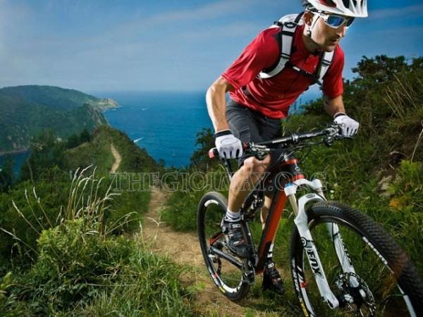 Xe đạp địa hình phù hợp dành cho người lớn