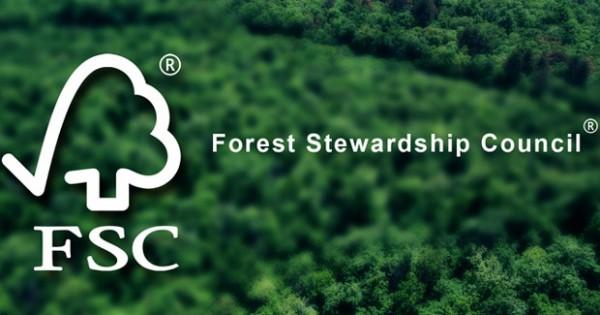 Xem xét khả năng kết hợp FSC và FLEGT (Phần 2)