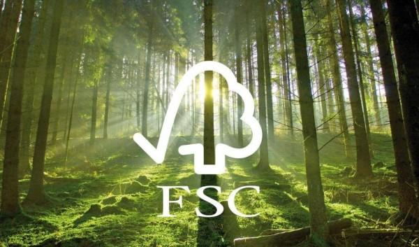 Yêu cầu chung về nguyên liệu mua vào theo FSC CoC