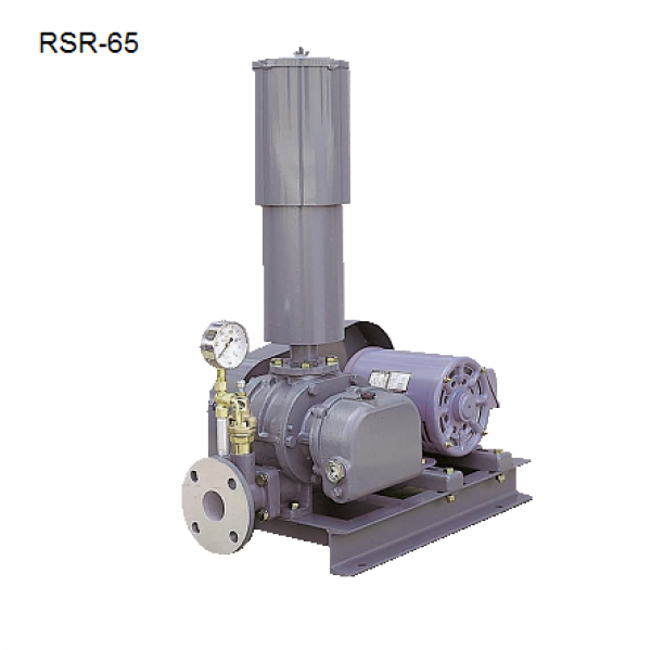 (Zalo/call)0983.480.878 Cung cấp máy thổi khí đặt cạn Tsurumi RSR-150