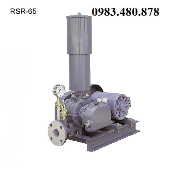 (Zalo/call)0983480878 máy thổi khí đặt cạn bể nước thải Tsurumi RSR150